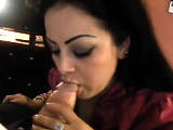 Hotel bj #cim #swallow